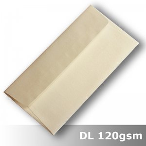 #J4573 - White Gold Curious Metallics 120gsm DL Size WPnS
